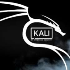 How to install Kali Linux?